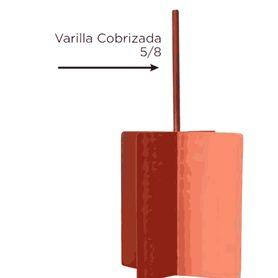plugs de red intellinet 790055